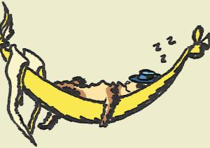 ferret banana hammock