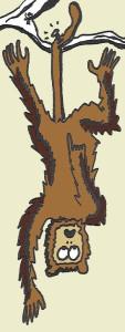 monkey nail tail